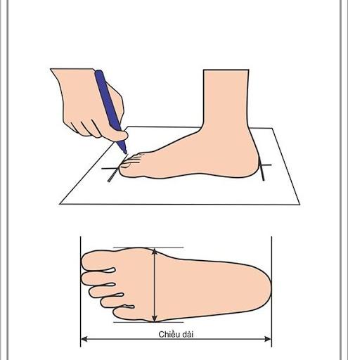 bảng đo size giày nữ